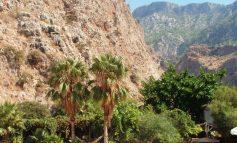 Ölüdeniz: raj nad Morzem Egejskim