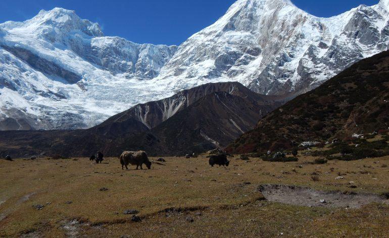 Trekking w Nepalu – jak go zorganizować?