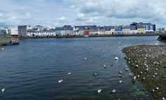 Galway - stolica kultury i hazardu